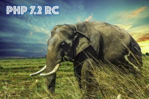 Zeit für PHP 7.2? SiteGround Server haben's